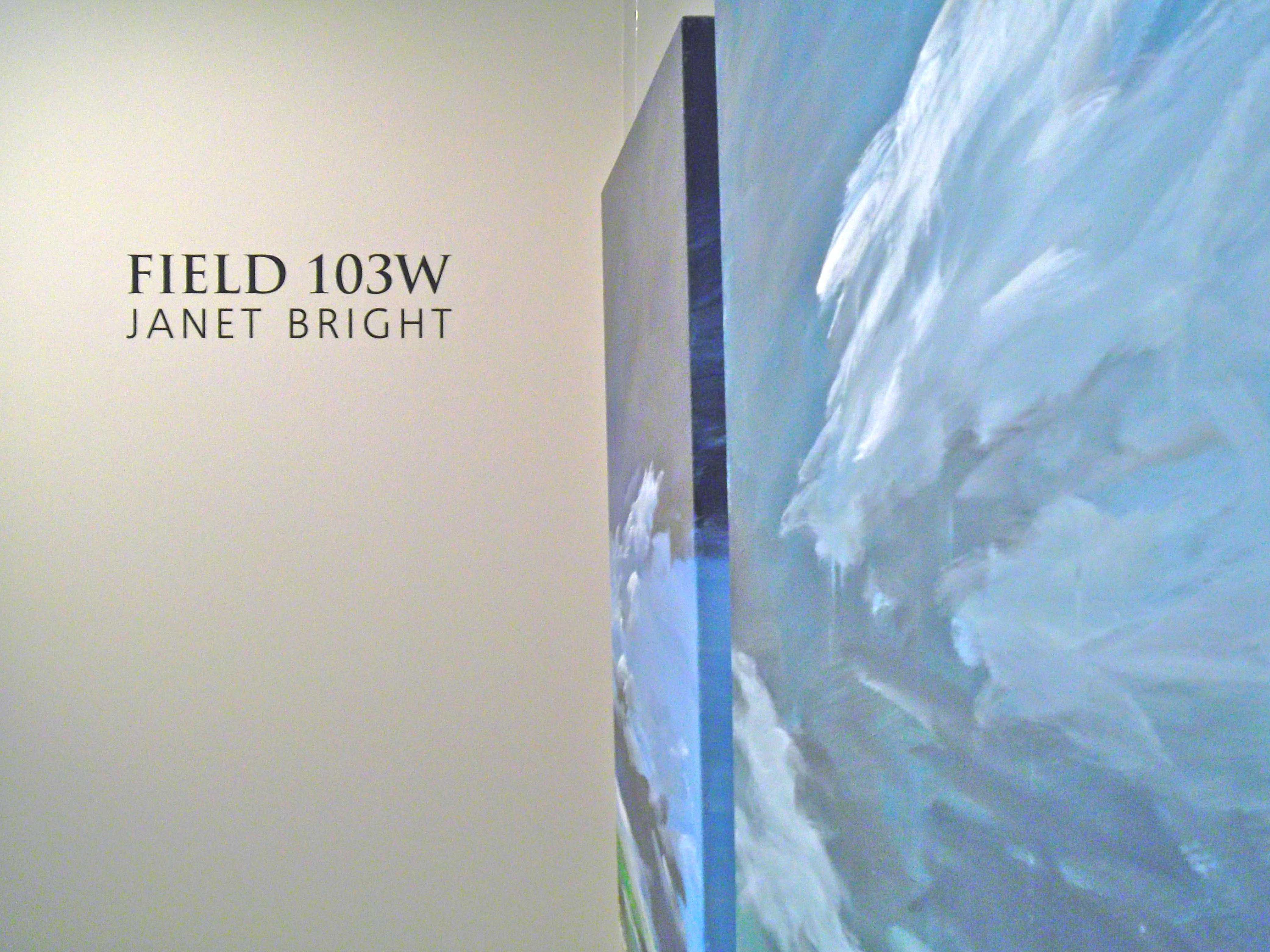 field 103w janet bright the reach gallery museum