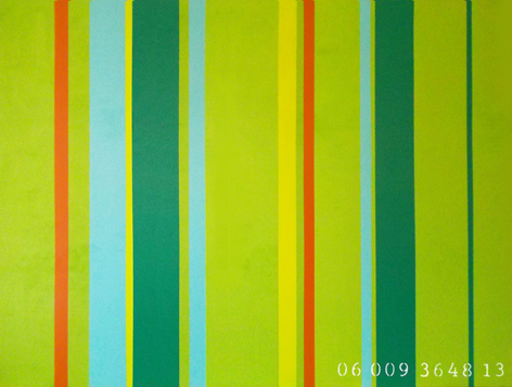 commodity of colour 06 009 3648 13    9th in series    36 x 48   2013  janet bright
