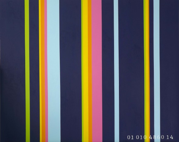 commodity of colour painting series  janet bright  art