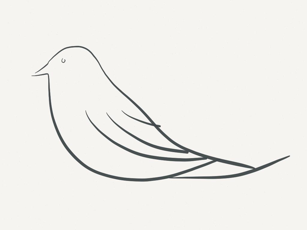 digital bird drawing janet bright