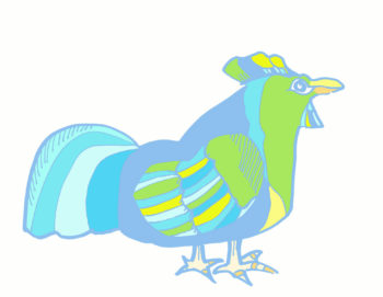 blue rooster hand drawn digital colour