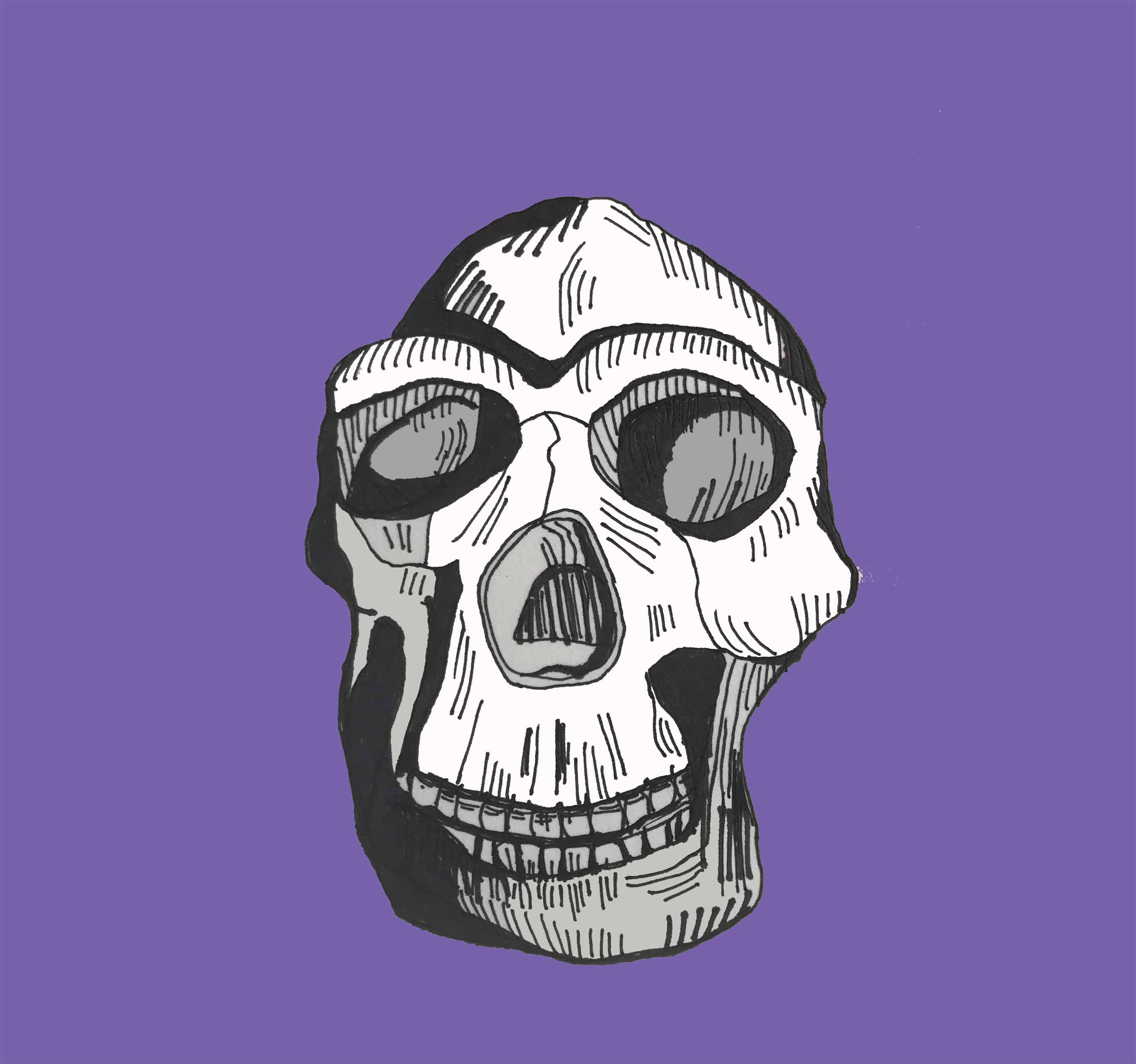 art every day number 204 bones human skull strength