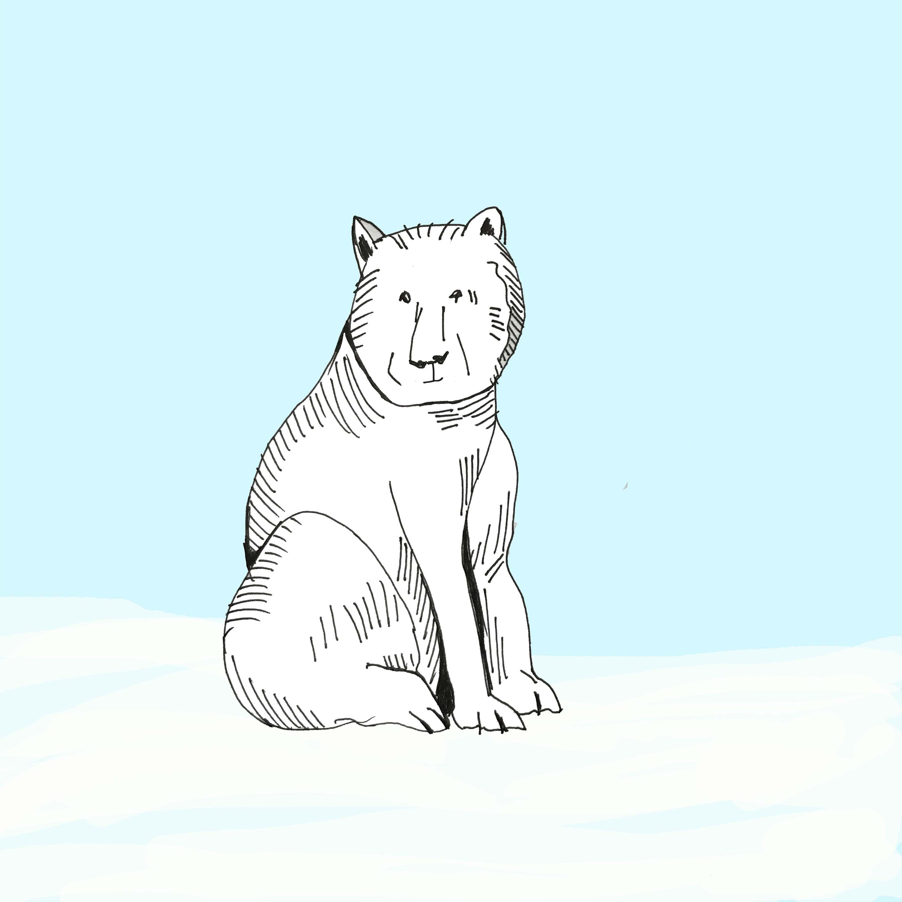art every day number 237 polar blue bear blue white